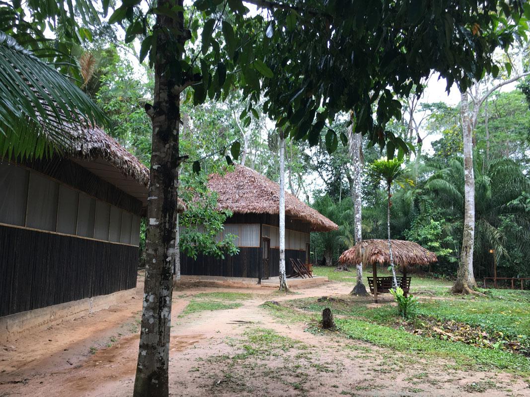 MADIDI: Selva y Parabas